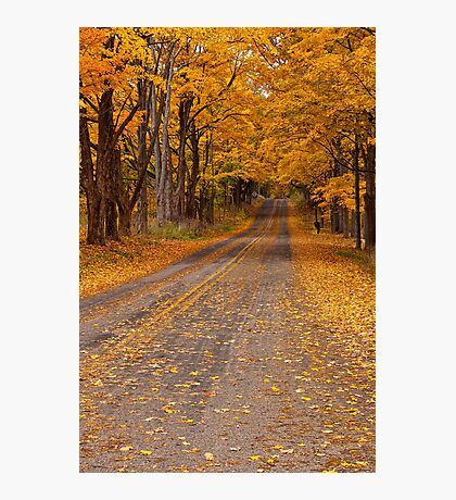 Fall Rural Country Road Photographic Print