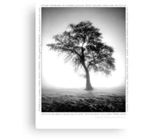 Follow the Path where Trees are found Canvas Print