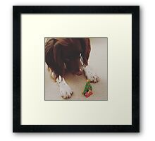 Dog Christmas Framed Print