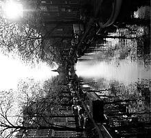 Amsterdam by Francisco Vasconcellos