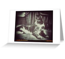 Like Queen Greeting Card