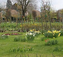 Monet's garden by Monica Batiste