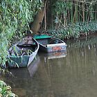Boats on Monet's pond at Giverny by Monica Batiste