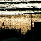 Beach Memories by Randall Faulkner