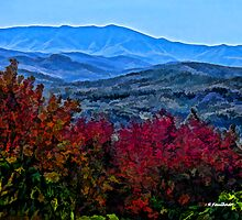 Fall Afternoon in the Blue Ridge Mountains by Randall Faulkner