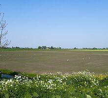 Farm ,rural area by mattijs