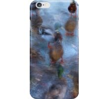 Ducks on ice iPhone Case/Skin
