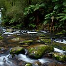 Hopetoun Falls by Cameron B