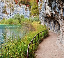 Path along the Lake by Artur Bogacki