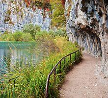 Path along the Lake by Artur Bogacki