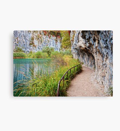 Path along the Lake Canvas Print