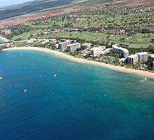 Kim Insley-Morrell, R(S) - Maui Foreclosures by dana723