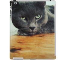 Russian Blue cat iPad Case/Skin