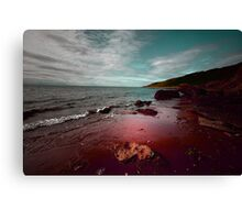 THE OCEAN IN MY BLOOD Canvas Print