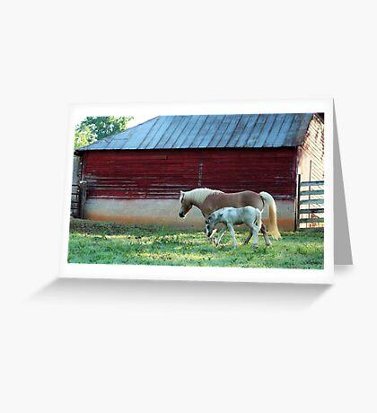 Berryvine Barn Greeting Card