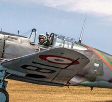 Curtiss Hawk 75-C1 No 82 G-CCVH Sticker