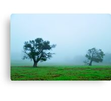 foggy morning field #2 Canvas Print