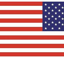 American Flag, REVERSE FLAG, Stars & Stripes, Pure & Simple, America, USA by TOM HILL - Designer