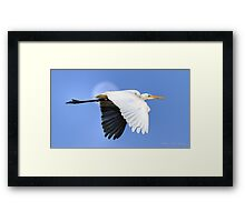 Fly to the Moon Framed Print