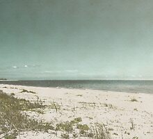 Gulf of Mexico by designingjudy