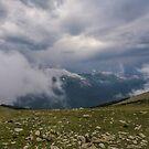 Trail Ridge Storm by nikongreg