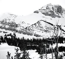 Dramatic Views from Jackson Hole by Ryan Davison Crisp