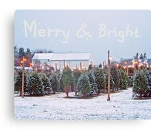 Christmas Trees for Sale Canvas Print