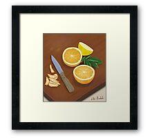 Citrus. Still Life. Digitally Painted Orange and Lemon Slices Framed Print