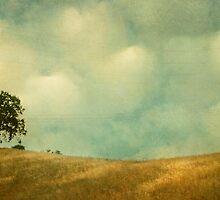 The Joy Of Division by Honey Malek