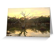 Pretty Puddle! Greeting Card