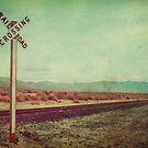 The Long Way Home by Honey Malek