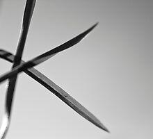 Grass close up, black & white by mattijs
