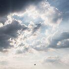 Take Flight by James Taylor