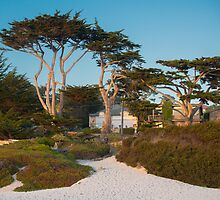 Carmel City Park by John Fletcher