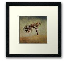 Mother Oak Framed Print