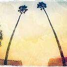 Twin Palms by Honey Malek