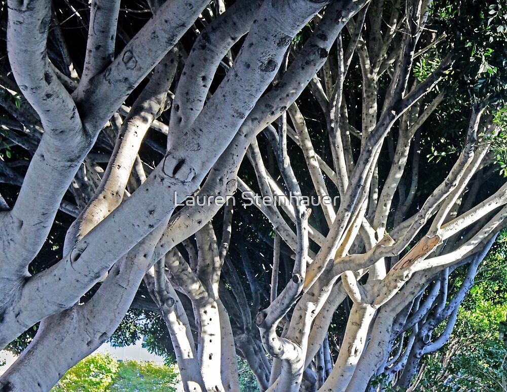 Blue Trees by Lauren Steinhauer
