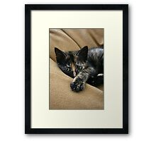 Stop taking my photo! Framed Print