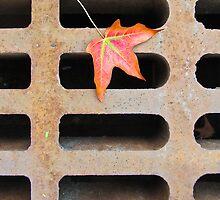 Autumn Calling by Dennis Maida