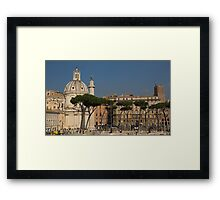 Rome - Umbrella Pines and Sunshine  Framed Print