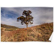 Lonley  Times,  Australian Landscape Poster
