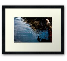 A goose and his shadow...Got Featured Work:) Framed Print