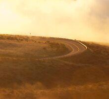 Haleakalā curves by Chris Sauerwald