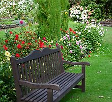 Garden Bench by phil decocco