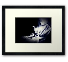 01-26-11  Out of Phase  Framed Print
