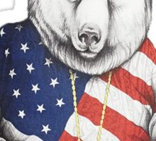 Bigi Bear America Sticker