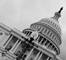 Capitol Hill - Washington DC by breeanne