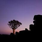 Twilight in the Giant's Playground - Keetmanshoop Namibia by Beth  Wode