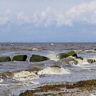 The Incoming Tide. by Lilian Marshall