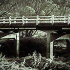 James Kirkwood Bridge, Cooerwull Road, Lithgow NSW by Deborah McGrath